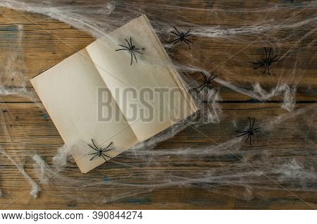 open old book and spiderweb over wood wall. Close up view of cute Halloween decorations.