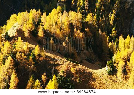 Fall landscape in Bucegi Mountains, Romania