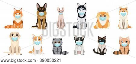Cartoon Cats And Dogs Breeds Set. Cats And Dogs Wearing Protective Face Masks. Collection Of Vector