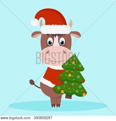 Cute And Happy New Year's Character, Bull 2021 In A New Year's Costume Of Santa Claus With A Christm