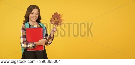 Back To Studying. Little Schoolgirl With School Books Backpack And Autumn Leaves. Autumn Time For St
