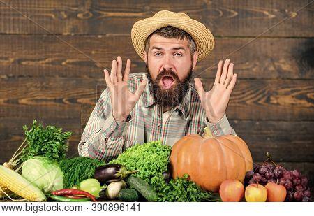 Buy Vegetables Local Farm. Farm Market Harvest Festival. Sell Vegetables. Man Bearded Farmer With Ve