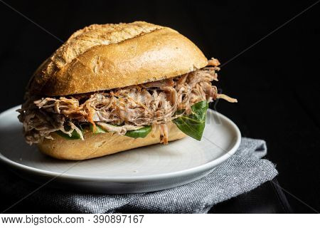 Sandwich with pulled meat on plate