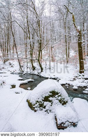 Mountain River Runs Through Winter Forest. Beautiful Scenery With Trees In Hoarfrost And Riverbanks