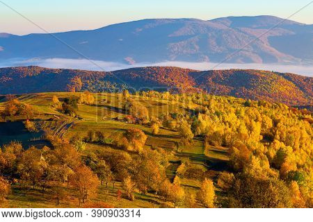 Thick Fog Over The Rural Hills In Morning Light. Dramatic Carpathian Countryside Autumnal Scenery