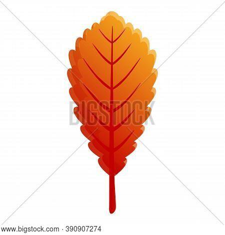 Season Autumn Leaf Icon. Cartoon Of Season Autumn Leaf Vector Icon For Web Design Isolated On White