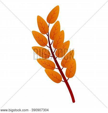 Ash Tree Autumn Leaf Icon. Cartoon Of Ash Tree Autumn Leaf Vector Icon For Web Design Isolated On Wh