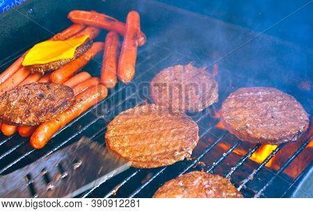 Meat On The Grill.indian Food.spicy Foods. Indian Spicy Foods