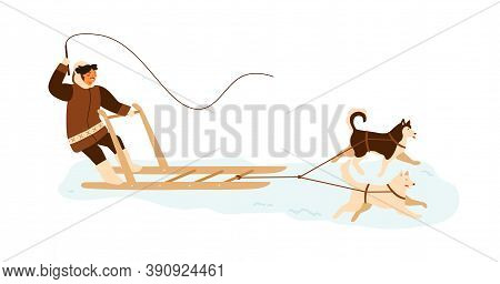 Eskimo Man Riding Husky Dog Sled. Musher In Winter Alaskan Clothes With Whip In Sleigh. Traditional