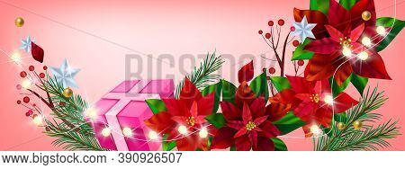 Christmas Winter Floral Vector Background With Red Poinsettia, Gift Box, Fir Branches, Stars. X-mas