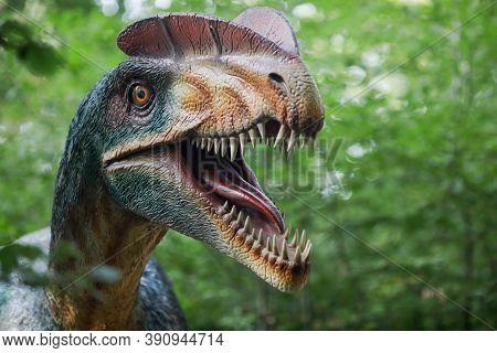 Rasnov, Romania - October 3, 2020: Details With A Dilophosaurus Dinosaur Model At An Outdoors Dino P
