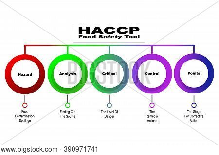 Diagram Of Haccp - Food Safety Tool With Keywords. Eps 10