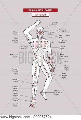 Basic Shiatsu Acupressure Points. Male Body Silhouette