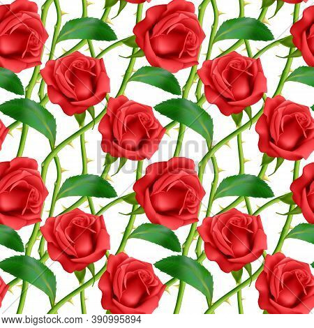 Seamless, Endless Pattern With Roses And Thorns, Bright Pink Roses On White Background, Design For Y