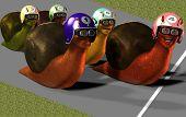 3 D Render of Toon Racing Snails poster