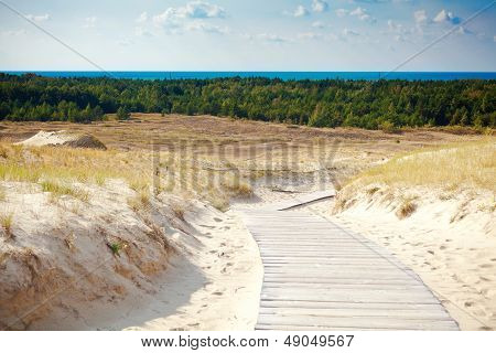 Sand Dunes Not Far From Nida
