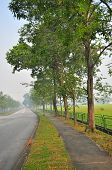 walkway with trees in a hazy morning at Yio Chu Kang area - Singapore poster