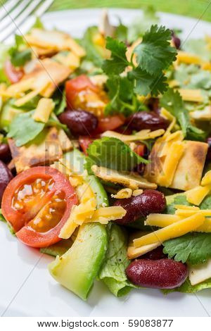 Serving of Mexican Salad with Avocado, Black Beans and Tortilla Croutons