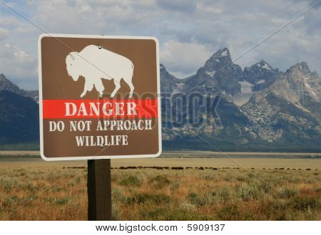 danger do not approach wildlife sign with bison herd and the Teton mountains in the background Grand Teton National Park Wyoming poster