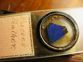 old labeled antique microscope slide of peacock feather poster