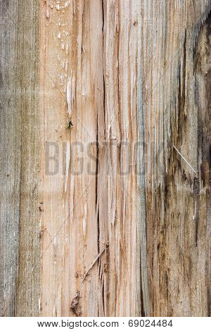 Cracked And Knotty Wood Texture