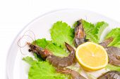 delicious fresh shrimps with lemon and salad poster