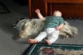 child laying on a dog poster