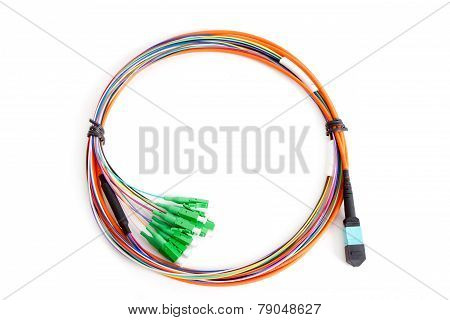 Ribbon fiber optic fun out patchcord with connector MTP isolated on white background poster