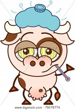 Cute cow feeling sad and sick