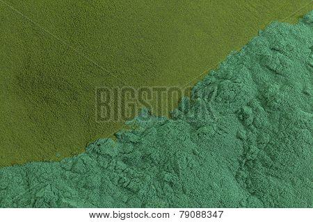 background of chlorella and spirulina  (bottom) sea algae supplement powder poster