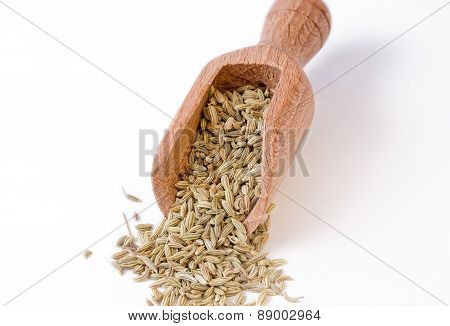 Fennel Seeds In The Bailer