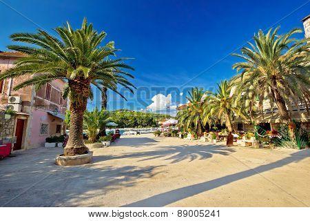 Stari grad on Hvar island palm waterfront Dalmatia Croatia poster