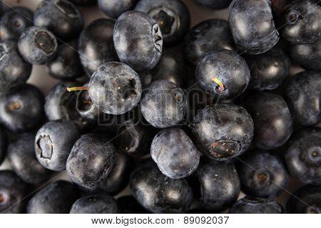 Blueberries - clsoe up, studio shot