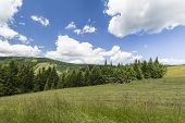 Hiking path in Gorce Mountains Part of Beskidy Mountains Poland near Ochotnica Gorna village poster