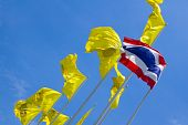 The Three colors of Thai flag with the yellow Royal Flags, poster