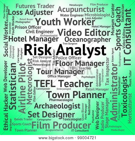 Risk Analyst Represents Analysers Position And Analysts