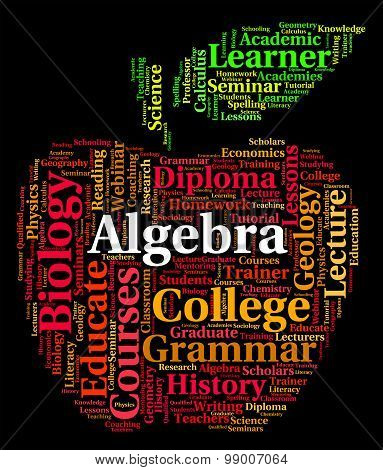Algebra Word Represents Math Fractions And Words