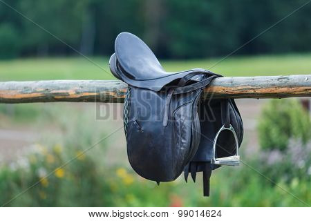 A Leather Saddles Horse In A Stable
