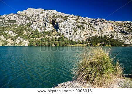 Mountain Lake Panta De Gorg Blau