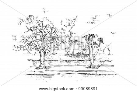 Trees And River Canal Hand Drawing Illustration