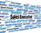 Sales Executive Indicating Managing Director And Hire poster