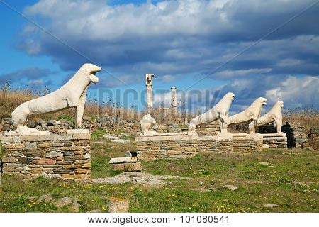 The marble lions on the Cascacade of Lions on  Delos are replicas of the originals that are in the museum on the island of Delos, Greece.