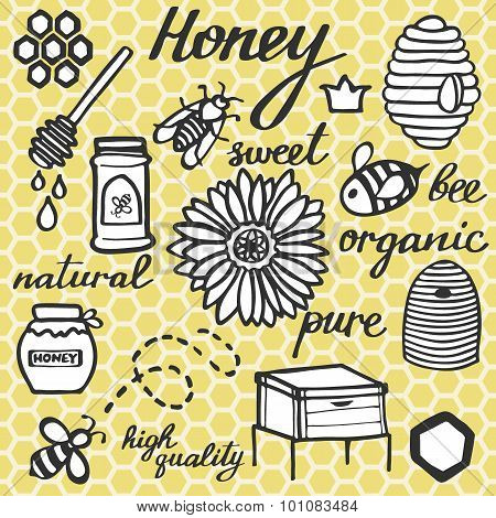 Honey set.  Hand-drawn doodle drawing on the comb background.  Vector illustration. poster