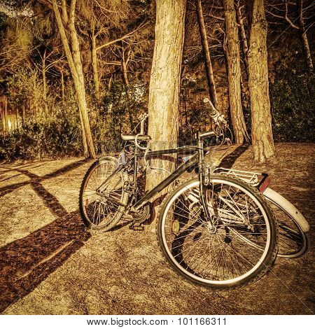Bikes In The Forest At Night In Sepia Tone
