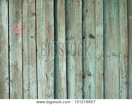 Fragment of an old fence with wooden planks covered with green paint peeling off. poster
