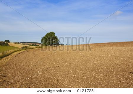 Yorkshire Wolds Soil Cultivation