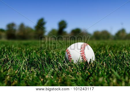 Baseball At A Field In California