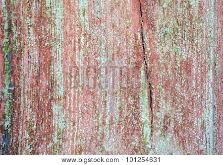 Old Painted Wood Background Of Barn Door Texture