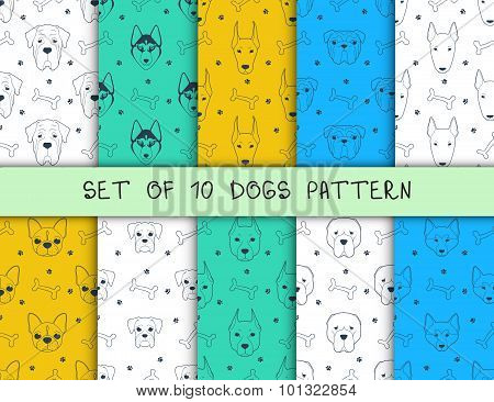 Set of 10 seamless patterns with different breeds dogs