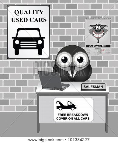 Used Car Showroom